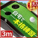 パターマット 練習 30cm × 3m 2ホール ホール幅 8.5cm 6.5cm スポーツ 練習グッズ 上達 グリーンマット パター練習 …