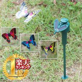 <お得な5個セット> ソーラー モーション バタフライ ソーラーパネル搭載 ガーデンフラッター 何色の蝶が届くかは、お楽しみ♪ ガーデニング雑貨 チョウ ガーデンアクセサリー ガーデニング ★★ □□