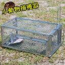 【送料無料】 餌吊式 小動物捕獲器 15.5×11×27cm アニマル キャッチャー 野生動物 小動物 捕獲 駆除 トラップ 罠 ワ…