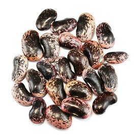 紫花豆特大 高原花豆 業務用1Kg はな豆 大粒 高原花豆1キログラム 国産むらさきはなまめ 乾物豆類 おせち料理などの煮豆、甘煮、甘納豆などお正月お豆 つまみ