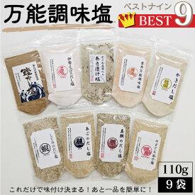送料無料 万能調味塩ベストナイン【9種類×110g 調味塩セット】お試し塩シリーズ【各種1袋・スタンドパック】