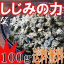 しじみ 佃煮 味噌汁 100g 【送料無料】味付け乾燥しじみ 乾燥 シジミ 蜆 しじみ