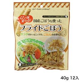 国産ごぼうを使ったフライドごぼう 40g 12袋入り 国産ごぼう使用 米油100%