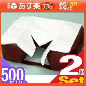 「あす楽対応商品」「清潔な肌触りで耐水性紙」フェイスペーパーY字カット 500枚入りX2個セット(SB-216A)【HLS_DU】