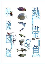 熱帯魚映像図鑑 汽水魚・その他の仲間(10種)【動画配信】