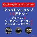 【ボーナスセール】【クラウド10匹セット】クラウドブラック5匹+シーロキューモラス3匹+アルトキューモラス2匹