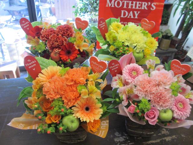【母の日対象商品】母の日ギフトカーネーションのアレンジ選べる4色 フリーのメッセージカード付気持ちを言葉にしてお伝えします母の日 カーネーション 花 アレンジメント 生花 フラワーアレンジ プレゼント【花屋】