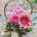 退職する同僚に!お花をプレゼントしたいと思います。小さくて可愛いアレンジメントはありますか?