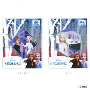 アナと雪の女王2 ビッグワッペン | Disney ディズニービッグワッペン アナと雪の女王2 アイロン接着 Disney プリンセス ワッペン バッグ 袋 保育園 入園入学準備 女の子