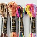 刺繍 刺しゅう糸 Anchor 25番 マルチ 2 【メール便可】アンカー|糸|刺繍糸