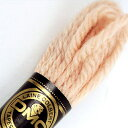 刺しゅう糸 DMC 4番 イエロー・オレンジ系 タペストリーウール 7452 【メール便可】|ししゅう糸 刺繍糸 ディー・…