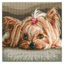 刺繍 PET(Yorkshire Baby)M709 輸入キット ペット ヨークシャーベビー