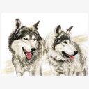 刺繍 Grey brothers(灰色狼の兄弟) Charivna 輸入キット