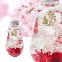 【11日1:59まで 10%OFFクーポン】ハーバリウム ラウンド ピンク【猫 ホワイトデー 母の日 春 プレゼント ギフト …