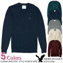 ■アメリカンイーグル メンズ Vネックセーター (5色)(1144-1572) S M L XL XXL 父の日 ラッピング 無料! あす楽 3980…