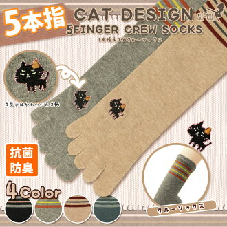 Five finger cat embroidered crew socks the antibacterial] cat pattern crew socks cat socks animal embroidered cat border plain simple crew-length crew black gray beige dark grey five finger socks.