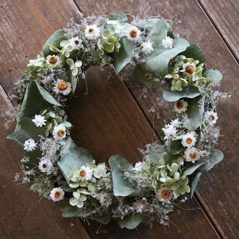 ユーカリとアンモビュームのグリーンリース◆ナチュラルなグリーンと白の春にぴったり爽やかリース * ドライフラワー 新築祝い 誕生日 母の日 ウェディング 結婚祝い クリスマス シンプル インテリア ナチュラル
