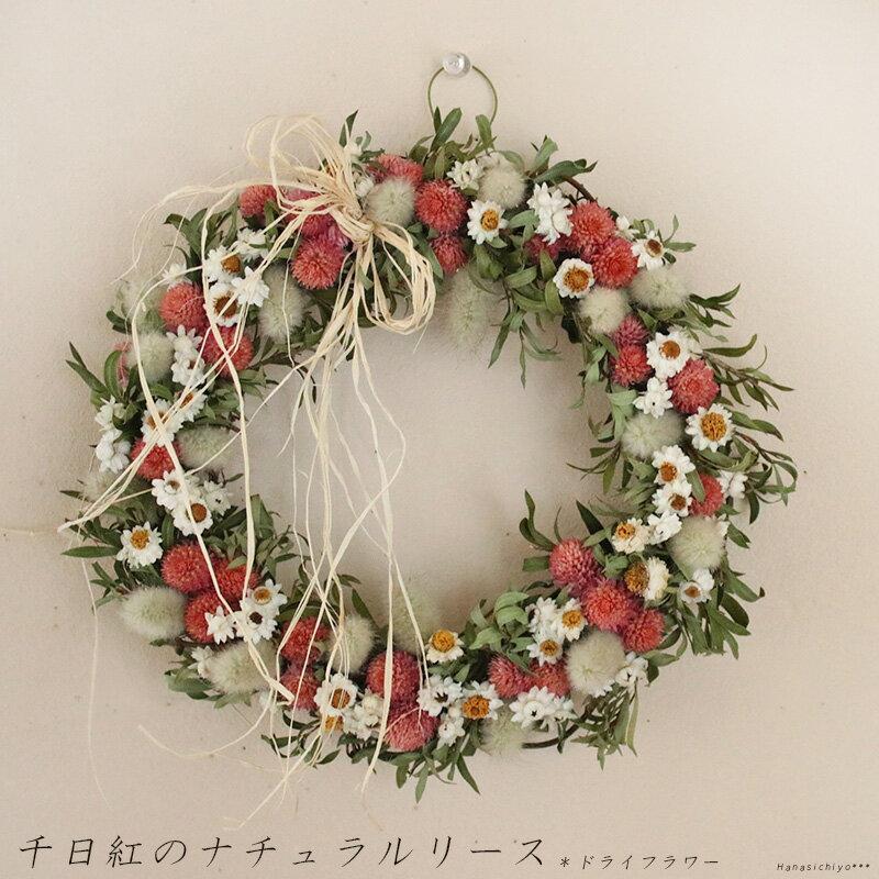 千日紅のナチュラルリース ◆ ドライフラワー / お祝い 誕生日 お礼 ホワイトデー プレゼント 母の日 結婚祝い 新築祝い ウェルカムリース ウェディング 花
