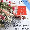 ● 初売り ●【 福袋 】 ドライフラワー ◆ ピンク・イエロー・ボタニカルから選べる!ナチュラルでおしゃれなドライフラワー約15点セット / ナチュラル グリーン インテリア ハンドメイド 花材 素