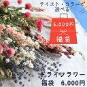 【送料無料】● 初売り ●【 福袋 】 ドライフラワー ◆ ピンク・イエロー・ボタニカルから選べる!ナチュラルでおしゃれなドライフラ…