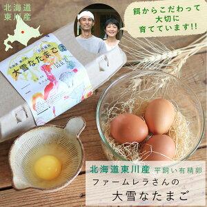 【6個パック】北海道東川町 ファームレラ 大雪なたまご ◆ 平飼い 有精卵 北海道産 美味しい アニマルウェルフェア サステイナブル 自然卵