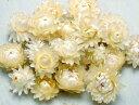 ヘリクリサムヘッドホワイト/カイザイク・ムギワラギク/北海道産ドライフラワー・花材・リース・手作り・国産・材料・…