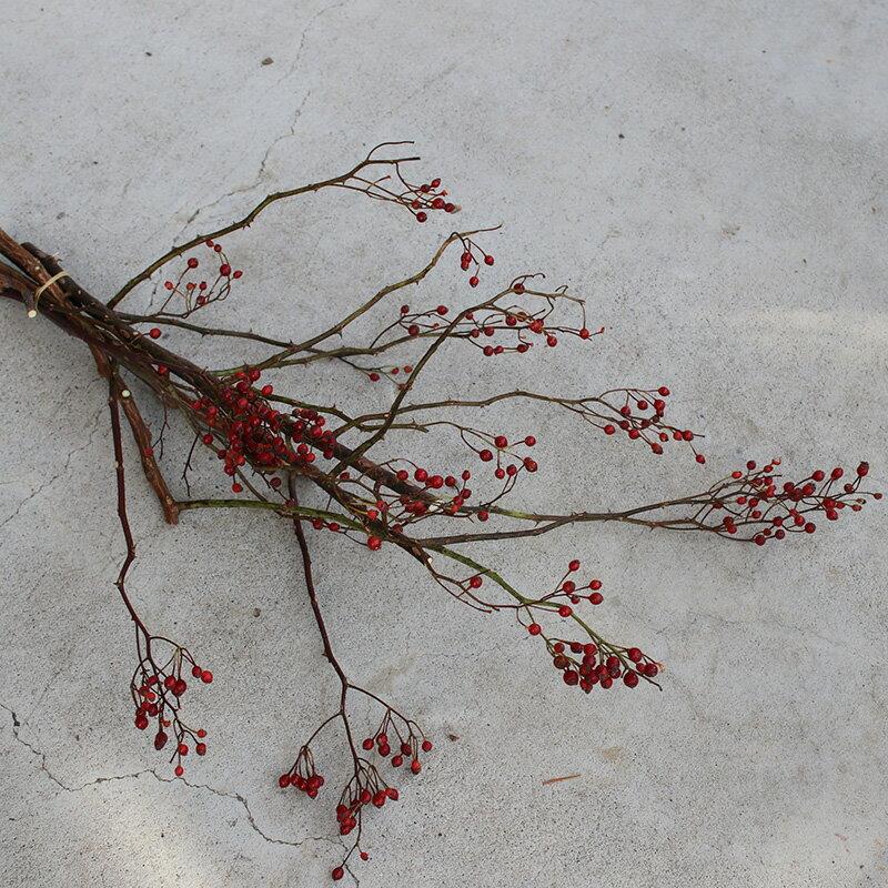 ドライフラワー 野バラの実/ 北海道産ドライフラワー 花材 リース 手作り 国産 材料 素材 ナチュラル インテリア ディスプレイ 赤い実 野ばらの実 シンプル 木の実