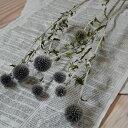 ルリタマアザミ ベッチーズブルー / ドライフラワー 花材 リース 手作り 材料 素材 ナチュラル インテリア シック