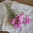 スターチス ピンク S/ ドライフラワー 花材 リース 手作り 国産 材料 素材 ナチュラル インテリア