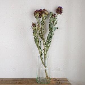 【約60〜80cm】 アーティチョーク ロング / ドライフラワー 花材 リース 手作り 材料 素材 ナチュラル インテリア ボタニカル グリーン ディスプレイ アーティーチョーク