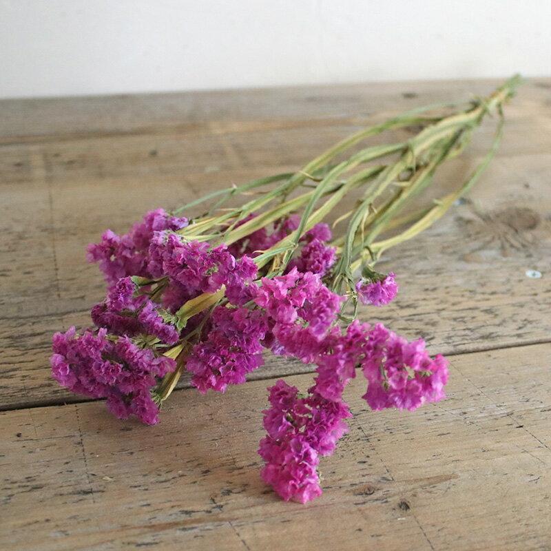 スターチス ローズ ( 濃ピンク )/ ドライフラワー 花材 リース 手作り 国産 材料 素材 ナチュラル インテリア ピンク