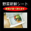野菜新鮮シート×【4個】【送料520円】【野菜室に敷いて鮮度保持】(フリーサイズ 45×35cm) 冷蔵庫 冷蔵庫シート 冷蔵…