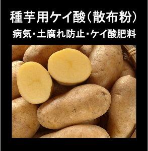 【防カビ珪酸】じゃが芋灰(種いも灰)(100g・ジャガイモ3kg分)×【1袋】【送料150円】 ジャガイモ 馬鈴薯 灰 わら灰 藁灰 種芋 じゃがいも用 じゃがいも ジャガイモ用肥料 じゃがいも用肥料