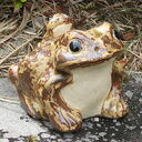 信楽焼 3号蛙 縁起物カエル お庭に玄関先に陶器蛙 やきもの 陶器 しがらきやき 蛙 陶器かえる 信楽焼カエル [ka-0002]