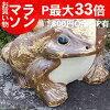 Shigaraki ware No.15 frog! Good luck frog / garden entrance to pottery frog! Pottery / ceramics / and while big frog Whisperer / frog / ware and Shigaraki frog / [ka-0007]