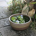 信楽焼 和風 おしゃれ 13号窯肌ボール型水鉢 すいれん鉢 メダカ鉢、金魚鉢にも最適 睡蓮鉢 陶器スイレン鉢 ハス鉢 は…