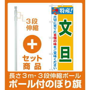 【セット商品】3m・3段伸縮のぼりポール(竿)付 のぼり旗 特産!文旦 (21483)