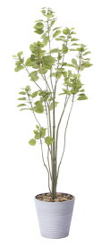 【送料無料】ブランチツリー (人工観葉植物) 高さ170cm 光触媒 (813A250)(店舗用品/光触媒 人工観葉植物・造花・フェイクグリーン/フロア(鉢型)用/165cm以上)