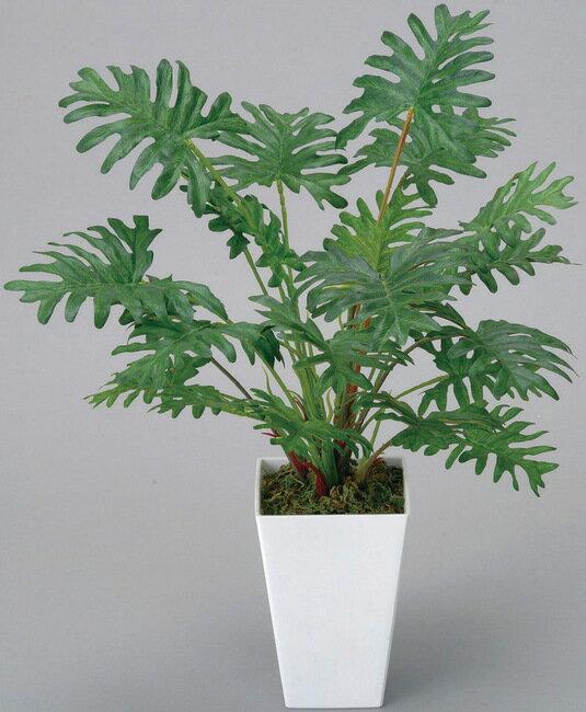 クッカバラ (人工観葉植物) 高さ45cm 光触媒 (店舗用品/光触媒 人工観葉植物・造花・フェイクグリーン/テーブル(卓上)用)
