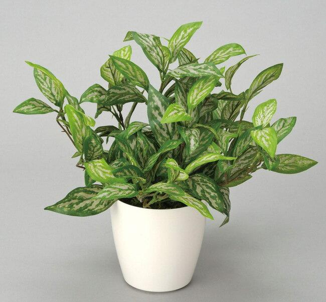 シルバーキング (人工観葉植物) 高さ34cm 光触媒 (店舗用品/光触媒 人工観葉植物・造花・フェイクグリーン/テーブル(卓上)用)