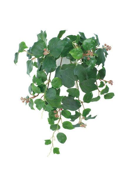 壁掛フレンチアイビー (人工観葉植物) 高さ50cm 光触媒 (店舗用品/光触媒 人工観葉植物・造花・フェイクグリーン/壁掛け/壁面用)