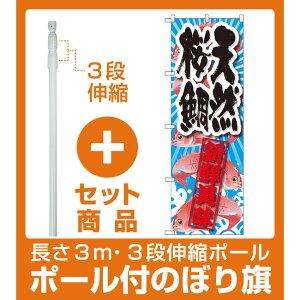 【セット商品】3m・3段伸縮のぼりポール(竿)付 のぼり旗 天然桜鯛 新鮮美味 (SNB-2359)