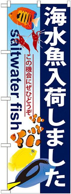のぼり旗 海水魚入荷しました のぼり ペットショップ/動物病院の販促にのぼり旗 のぼり