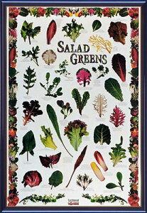 【送料無料♪】アートポスター 「サラダ グリーンズ」 PHOTO作(ポスターフレーム/花・花のある絵画)