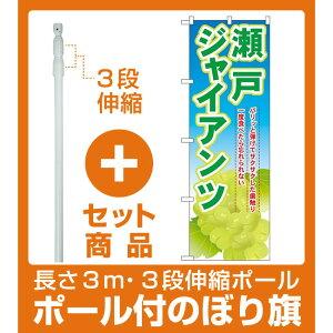 【セット商品】3m・3段伸縮のぼりポール(竿)付 のぼり旗 瀬戸ジャイアンツ (SNB-1380)
