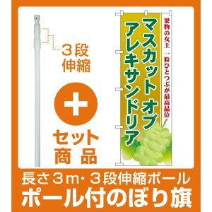 【セット商品】3m・3段伸縮のぼりポール(竿)付 のぼり旗 マスカットオブアレキサンドリア (SNB-1385)