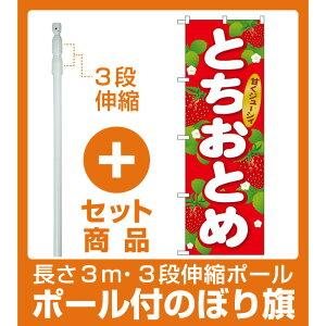 【セット商品】3m・3段伸縮のぼりポール(竿)付 のぼり旗 とちおとめ (SNB-1414)