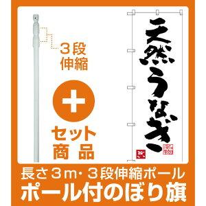 【セット商品】3m・3段伸縮のぼりポール(竿)付 のぼり旗 天然うなぎ (SNB-3444)