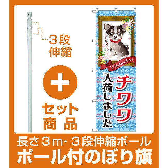 【セット商品】3m・3段伸縮のぼりポール(竿)付 のぼり旗 チワワ入荷しました (GNB-2450)(業種別/ペットショップ/犬・猫・小動物)