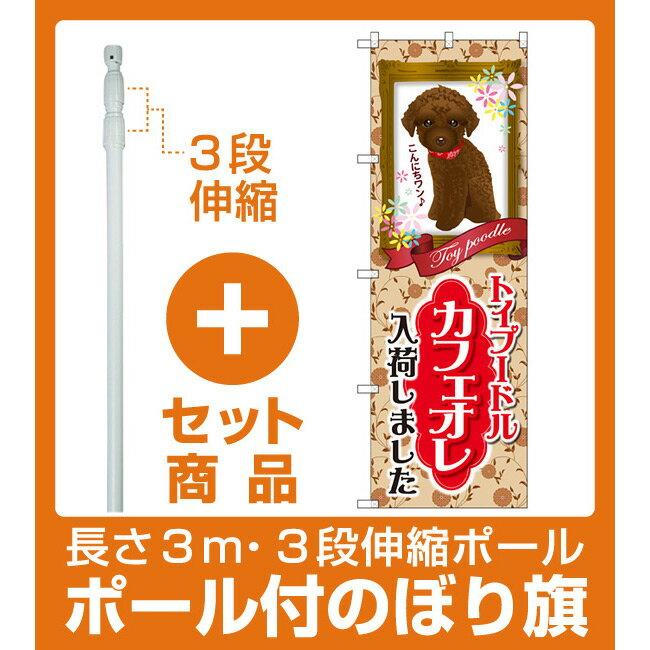 【セット商品】3m・3段伸縮のぼりポール(竿)付 のぼり旗 トイプードル カフェオレ 入荷 (GNB-2456)(業種別/ペットショップ/犬・猫・小動物)